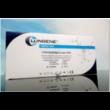 Clungene® COVID-19 szerológiai (IgG/IgM) gyorsteszt